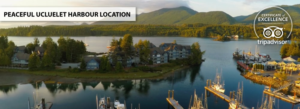 Waters Edge Harbour Island Location Aerial